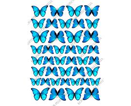 вафельная картинка бабочки 23