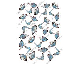 вафельная картинка бабочки 31